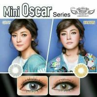 Mini oscar grey/ brown by dreamcon