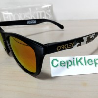 Oakley Frogskins Eric Koston W/ FIRE Lens (Polarized)