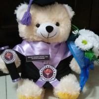 Boneka Wisuda Teddy Bear 27 cm Bucket Bunga Kado Romantis