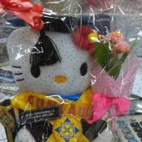 Jual Boneka Wisuda Hello Kitty 25 cm Atribut Lengkap Kado Romantis Murah