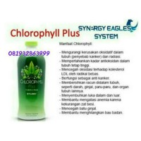 Chlorophyll Plus Synergy
