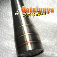 harga Knalpot Racing Ninja250 Undertail Gp Catalunya Racing Custom Tokopedia.com