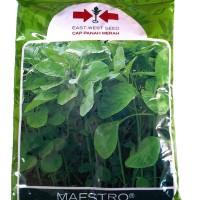 1 Pack 500 gr Benih Bibit Sayuran Bayam Hijau Maestro Cap Panah Merah