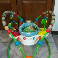bright starts giggle bugs activity jumperoo