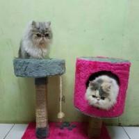 Jual Garukan Kucing Murah