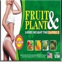 Jual OBAT PELANGSING BADAN ALAMI FRUIT & PLANT NATURAL SLIMMING Murah