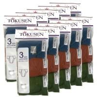 Grosir Tokusen Celana Dalam Warna - 10 Pack @ 3pcs