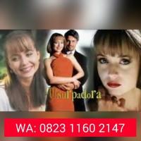 Jual Dvd Telenovela Cinta Paulina / La Usurpadora Lengkap