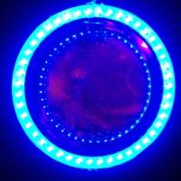 Lampu Motor LED PROJIE U8 mini AE+DE Double Sinar bukan HID Projector
