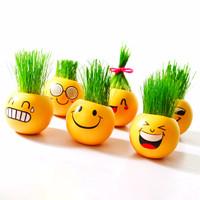 Jual [Diskon] Emoji Plant Grass Doll - Boneka Tanaman Rumput Unik Kado / So Murah