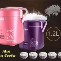 Jual Rice Cooker Mini (2susun, menanak nasi + Egg Boiler) Murah