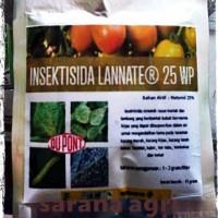 Insektisida Basmi Semut, Ulat, Kutu, dan Lalat Lanate 25WP