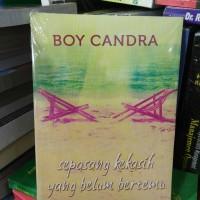 Buku Novel Sepasang Kekasih Yang Belum Bertemu By Boy Candra NewCover