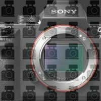 Harga sony a7s mark ii body ilce 7smkii sony alpha 7s mark ii free | Pembandingharga.com
