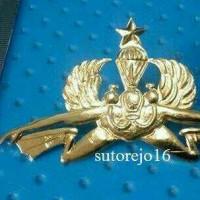 brevet logo batalyon intai amfibi yontaifib marinir