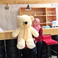Jual Boneka Teddy Bear Krem Besar (murah) Murah