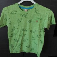 Baju Kaos Anak Laki Sketsa Dinosaurus Hijau Double Print