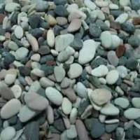 Jual Batu Pancawarna Hiasan Dekorasi Dasar Aquarium Kemasan 1 Kg Murah