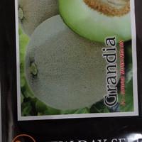 Jual Benih New Day Seed - Melon Grandia Murah