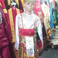 pakaian baju adat daerah karnaval lampung cowok Sd-SMP