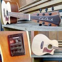 gitar akustik elektrik cole clark fishman presys blend
