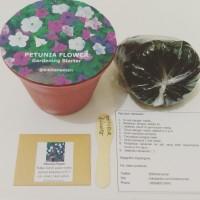 Petunia Flower Gardening Starter