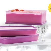 Jual Tupperware Frozen Rectangular (3) Murah