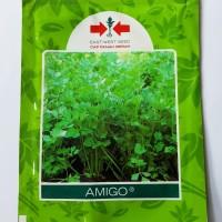 1 Pack 10000 Benih Bibit Sayuran Seledri Amigo Cap Panah Merah