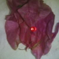 Jual batu merah delima alami Murah
