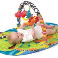 Jual playgro dino baby gym playmat matras alas kasur main play gro playmate Murah