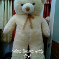 Jual BONEKA TEDDY BEAR SUPER JUMBO CREAM 100CM Murah