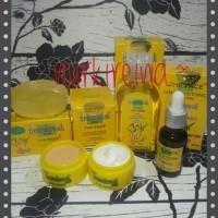 Harga paket temulawak the face cream day night sabun toner | antitipu.com