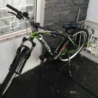 Sepeda United Bike Miami XC 72