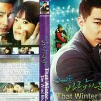 drama korea the winter that wind blows