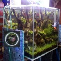 jasa aquascape