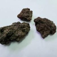 Batu Gobros - Hiasan untuk Aquascape