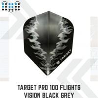 Target Pro 100 Flights Vision Black Grey Fire #300790