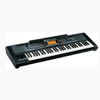 Roland E09 Interactive Arranger Electronic Keyboard