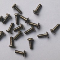 DOominiOn M3 x 14mm Pure Titanium Screws 10pcs - ISO7380