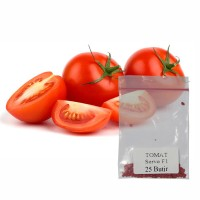 Jual Hidroponik Benih/Bibit Tomat Servo F1 25 butir (10007) Murah