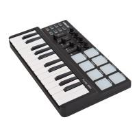 Keyboard midi Worlde panda mini25