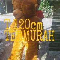 Jual Boneka Teddy Bear Jumbo Grosir Murah