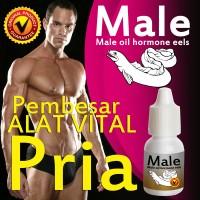 Male Eel Oil Pembesar alat vital pria tersedia pemutih gluta glutamen