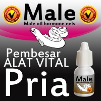 Male Eel Oil Pembesar alat vital pria (tersedia pemutih gluta,glutamen