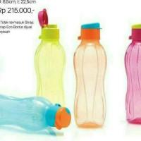 eco bottle 500ml