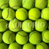 Bola Kasti / Bola Tenis - Bola Tenis Lapangan - Bola Training Bekas