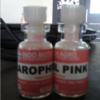 Carophill pink