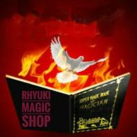 Buku Api Burung Super Magician Book Sulap Trik Unik Grosir Batman
