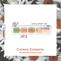 Catrice Cosmetic Allround Concealer