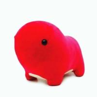 Bada Namu Mimi Gift Toys